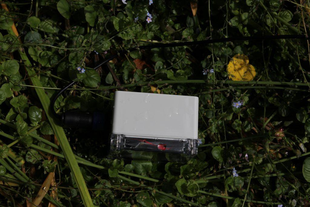 Wildlife Camera | Anfractuosity | Still waiting on the